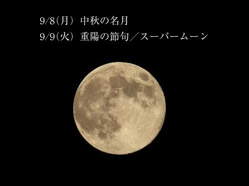 140907_001.jpg
