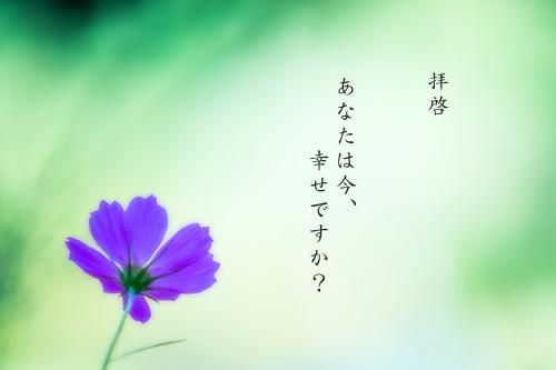 140921_05.jpg